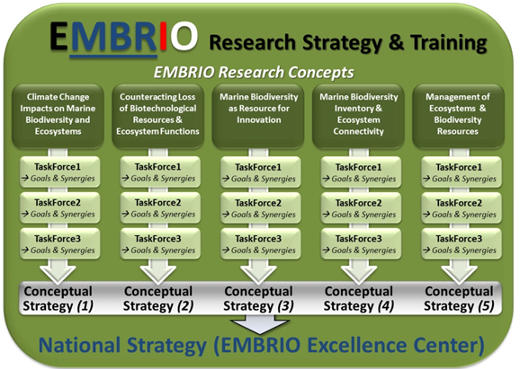 Research Strategy and Training
